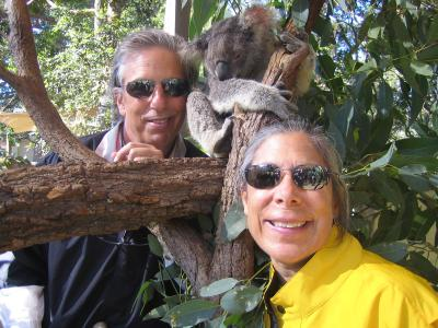 With a sleepy koala, Sydney, Australia