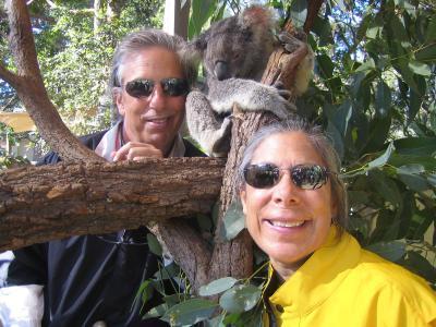 With a sleepy koala, Sydney, Australia