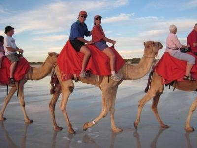 Sunset camel ride, Broome, Australia